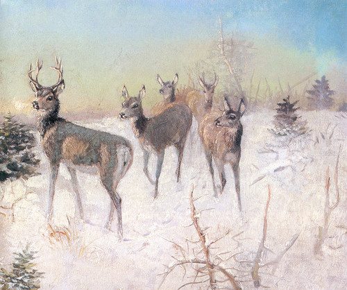 Art Prints of Deer in Winter by Charles Marion Russell