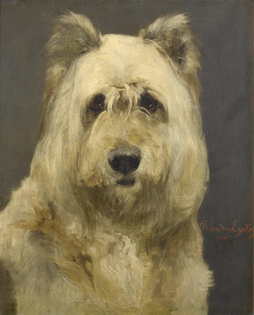 Art Prints of Portrait of a Dog by Charles Van den Eycken