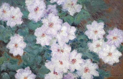 Art Prints of Clematis by Claude Monet