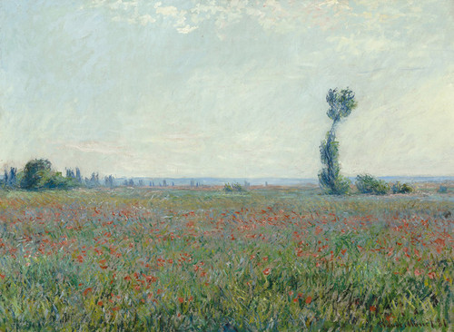 Art Prints of Poppy Field, 1881 by Claude Monet