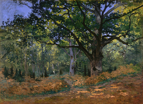 Art Prints of The Bodmer Oak, Fontainebleau Forest by Claude Monet