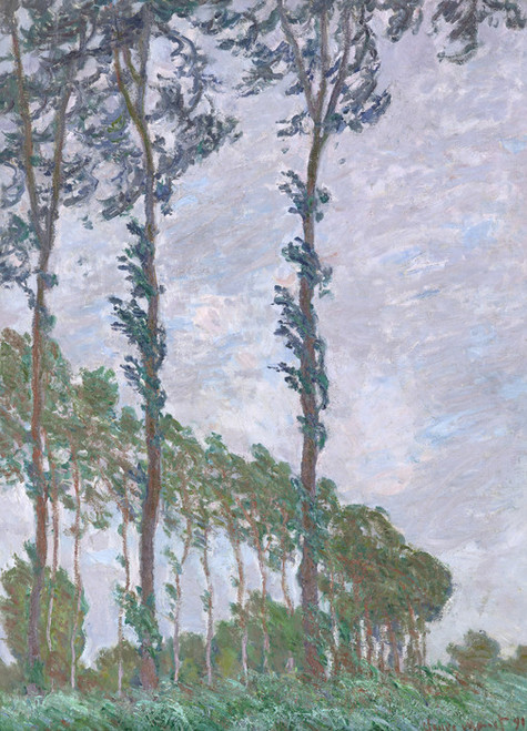 Art Prints of Wind Effect Series of the Poplars by Claude Monet