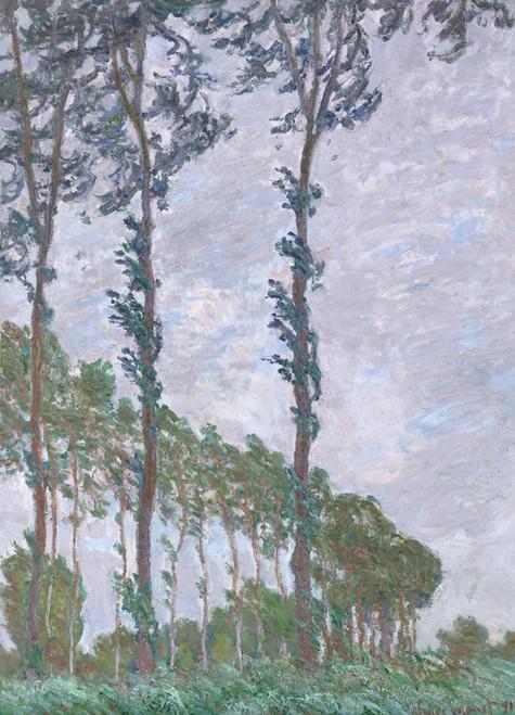 Art Prints of Wind Effect Series of the Poplars by Claude Monet