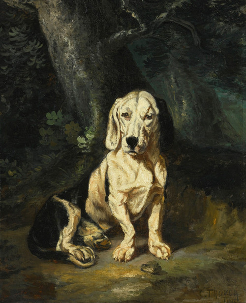 Art Prints of A Seated Basset Hound by Constant Troyon