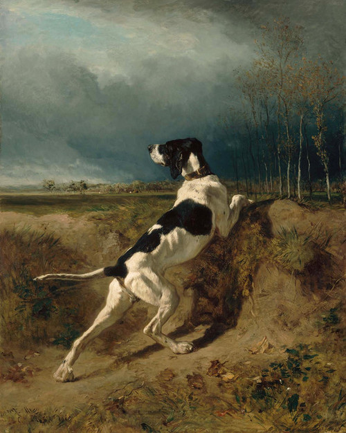 Art Prints of Hound Pointing by Constant Troyon