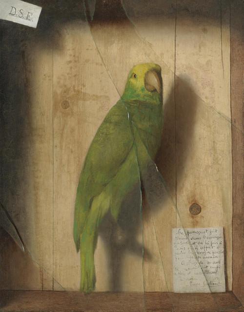 Art Prints of Homage to a Parrot by De Scott Evans
