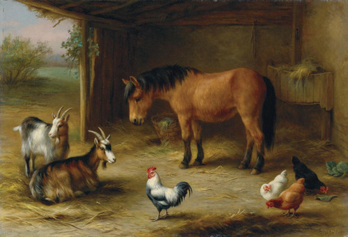 Art Prints of A Pony with Goats and Chickens in a Barn by Edgar Hunt