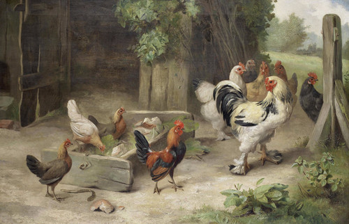 Art Prints of Farmyard Scene with Chickens and Bantams by Edgar Hunt