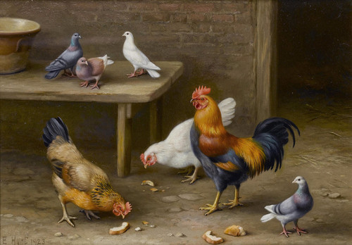 Art Prints of Chickens and Pigeons in a Farmyard by Edgar Hunt