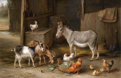 Art Prints of Feeding Time in the Farmyard by Edgar Hunt
