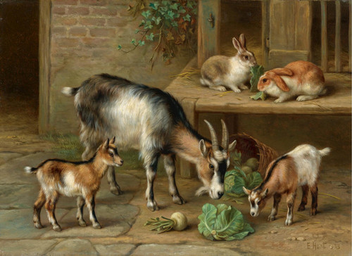 Art Prints of Rabbits and Goats at Feeding Time by Edgar Hunt