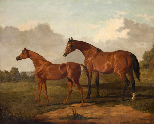 Art Prints of A Bay Mare and Colt in a Landscape by Edmund Bristow