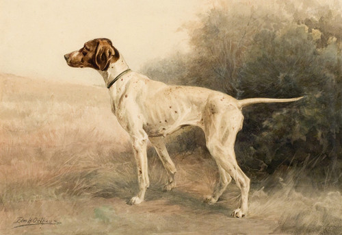 Art Prints of Hunting Dog Pointer IIII by Edmund Henry Osthaus