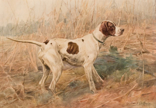 Art Prints of Hunting Dog Pointer III by Edmund Henry Osthaus
