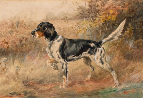 Art Prints of Hunting Setter Dog II by Edmund Henry Osthaus