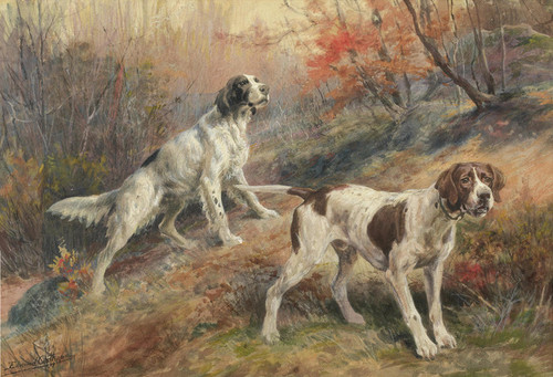Art Prints of Setter and Pointer by Edmund Henry Osthaus