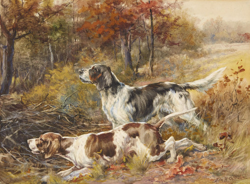 Art Prints of English Setter and Pointer in a Field by Edmund Henry Osthaus