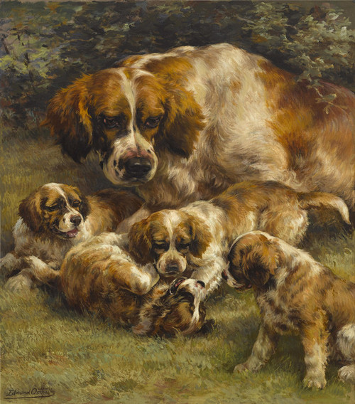 Art Prints of Setter Litter by Edmund Henry Osthaus
