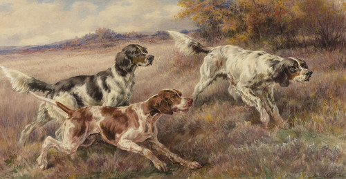 Art Prints of Three Setters by Edmund Henry Osthaus