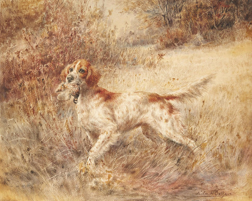 Art Prints of Setter with a Bird by Edmund Henry Osthaus