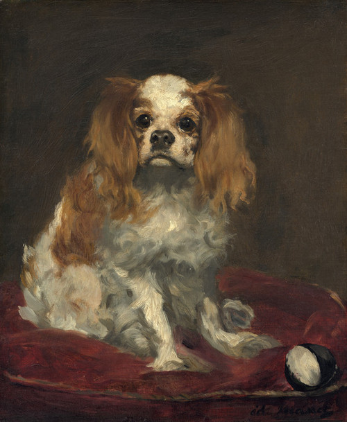 Art Prints of A King Charles Spaniel by Edouard Manet