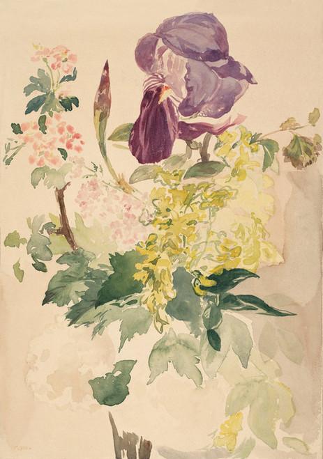 Art Prints of Flower Piece with Irish Laburnum and Geranium, 1880 by Edouard Manet