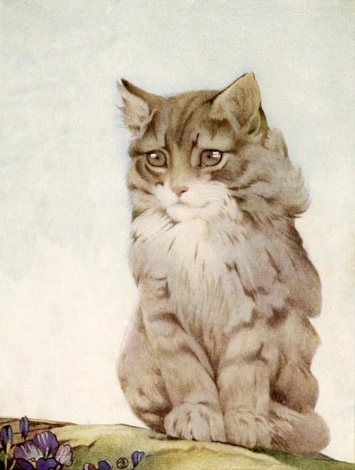 Art Prints of Kittens by Edward Julius Detmold