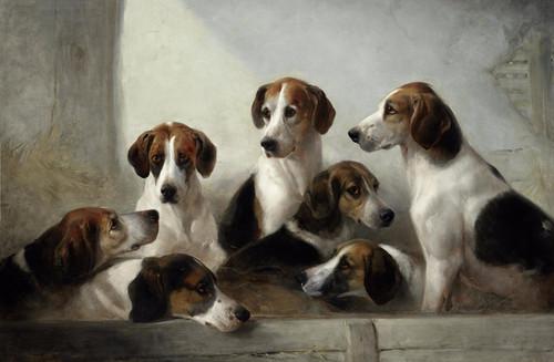 Art Prints of Favorite Hounds by Edward Robert Smythe