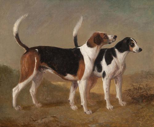 Art Prints of Suffolk Hounds by Edward Robert Smythe