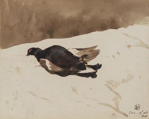 Art Prints of Blackcock by Edwin Henry Landseer