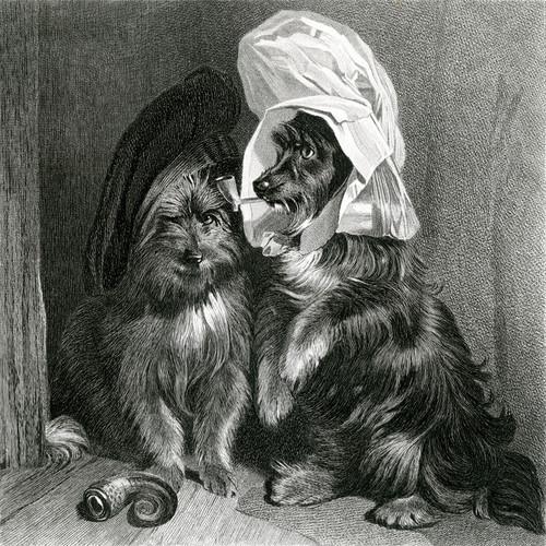 Art Prints of Comical Dogs by Edwin Henry Landseer