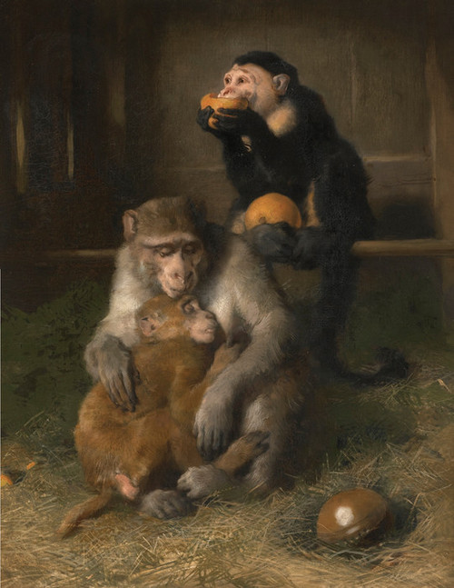 Art Prints of Doctor's Visit to Poor Relations by Edwin Henry Landseer