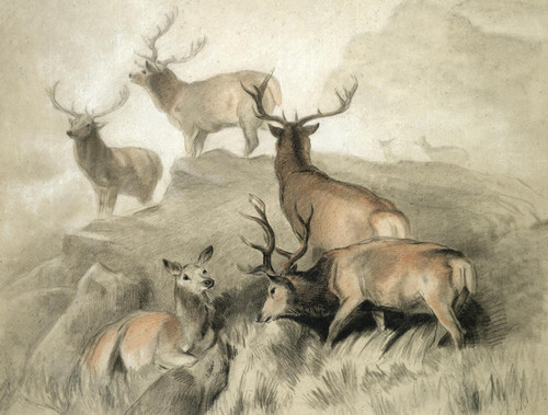 Art Prints of Some of the Best Hearts in the Forest by Edwin Henry Landseer