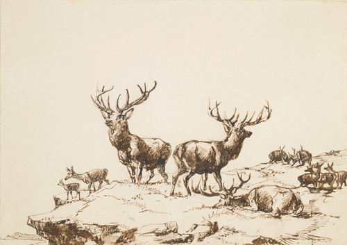 Art Prints of Stags and Hinds on a Mountain by Edwin Henry Landseer