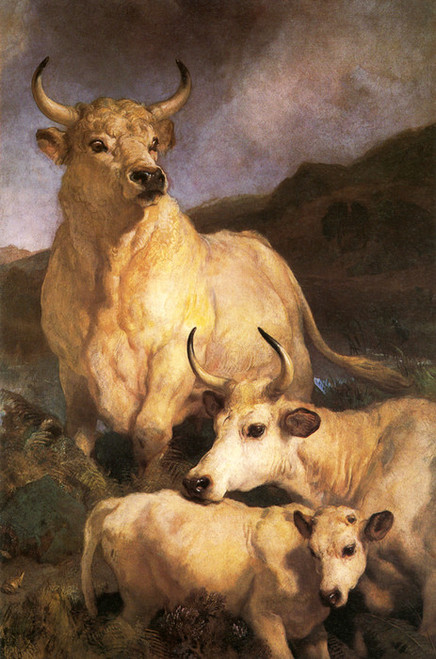 Art Prints of Wild Cattle of Chillingham by Edwin Henry Landseer