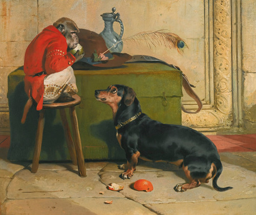 Art Prints of Ziva, Prince of Saxe Coburg Gotha's Dog by Edwin Henry Landseer