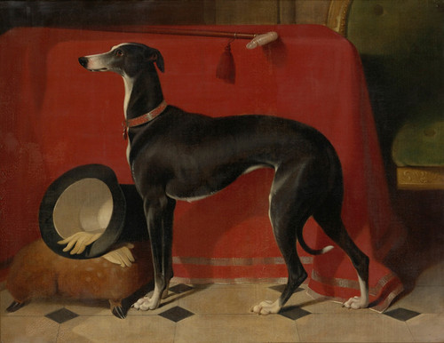 Art Prints of The Greyhound, Eos by Edwin Henry Landseer