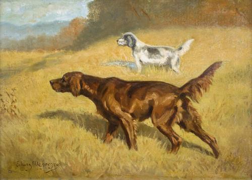 Art Prints of An Irish and English Setter Working a Field by Edwin Megargee
