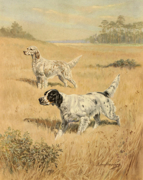 Art Prints of English Setters in a Landscape by Edwin Megargee