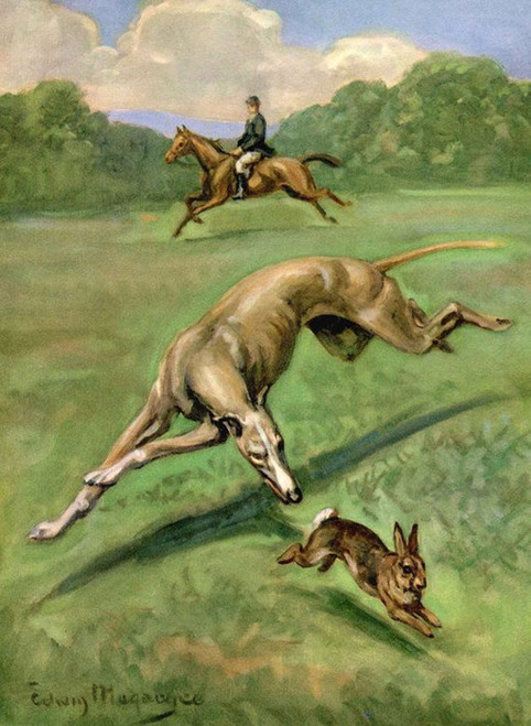 Art Prints of Greyhound Chasing Rabbit by Edwin Megargee