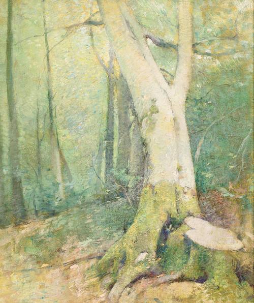 Art Prints of Woodland Interior by Emil Carlsen