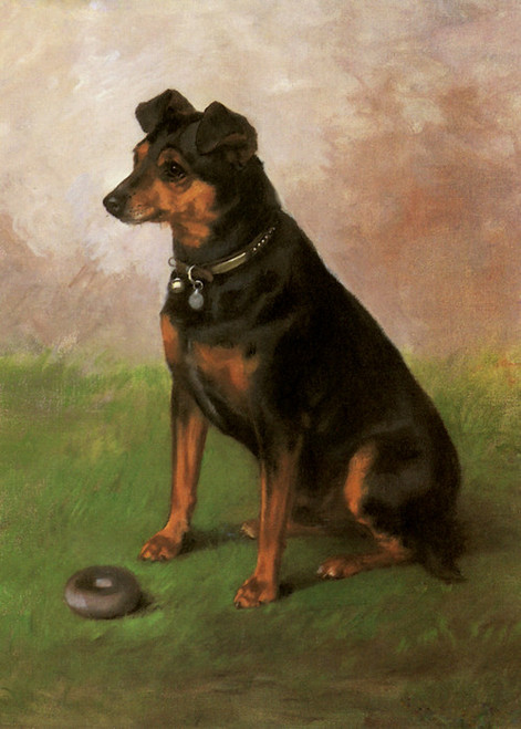 Art Prints of Monkeyano, a Manchester Terrier or Mini Pinscher by Frances Fairman