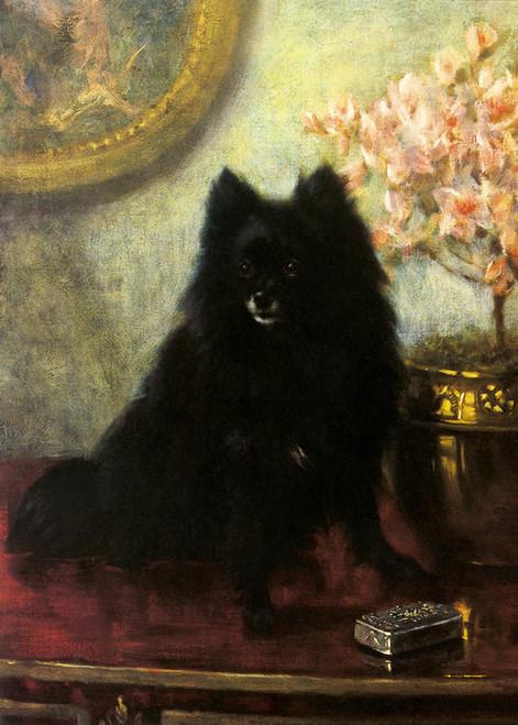 Art Prints of Seated Pomeranian by Frances Fairman