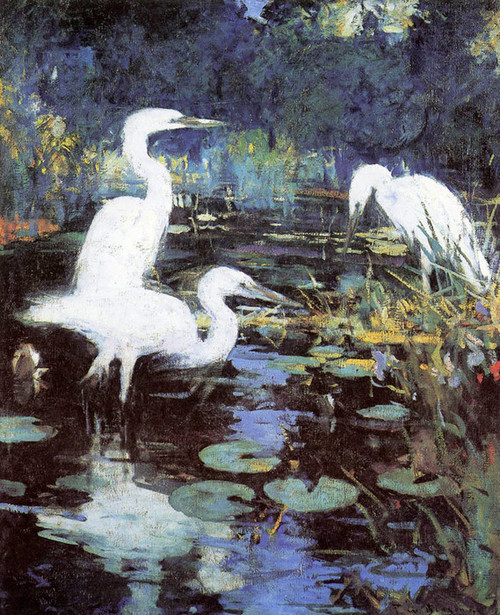 Art Prints of White Herons by Frank Weston Benson