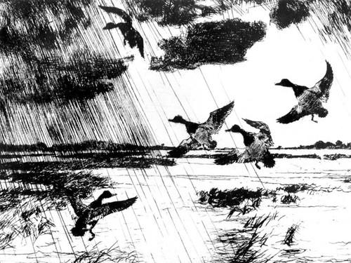 Art Prints of Rain Squall by Frank Weston Benson