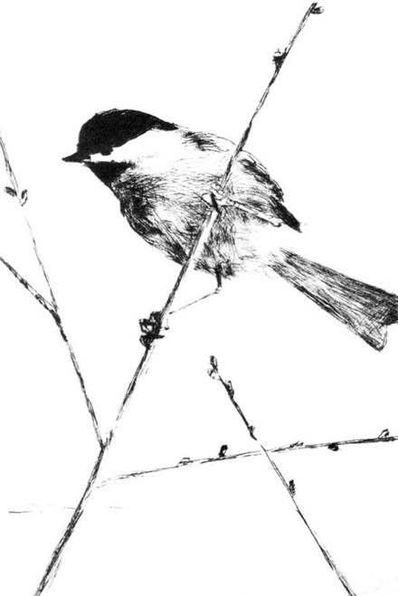 Art Prints of Chickadee by Frank Weston Benson