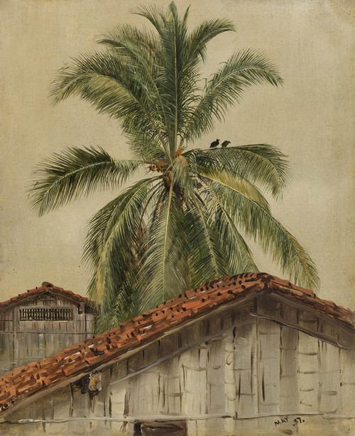 Art Prints of Palm tree and Housetops, Equador by Frederic Edwin Church