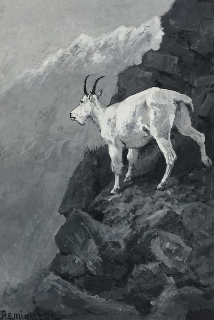 Art Prints of Mountain Goat on a Rocky Ledge by Frederic Remington