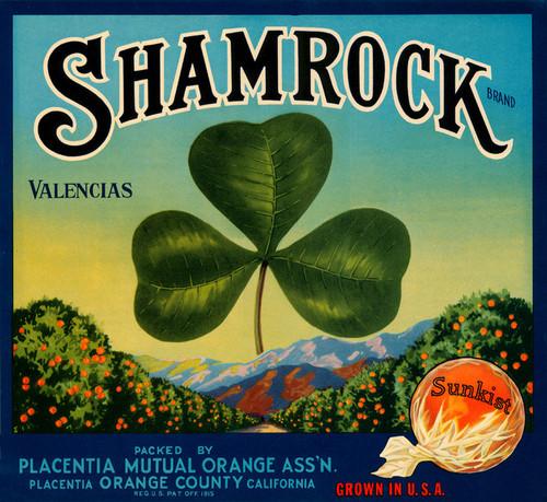 Art Prints of 020 Shamrock Valencias, Fruit Crate Labels