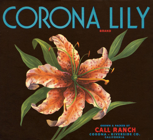 Art Prints of 034 Corona Lily Brand, Fruit Crate Labels